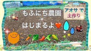 沖縄の 田舎で 念願の 家庭菜園をはじめました( ´∀`) 赤土の土壌改良に...