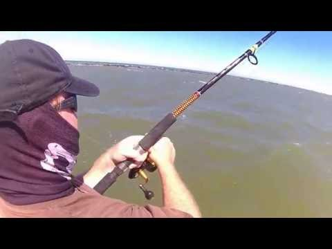 Galveston Texas Ship Channel East Jetty Red Drum fishing