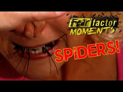 Fear Factor Moments | Roulette Spider Eating