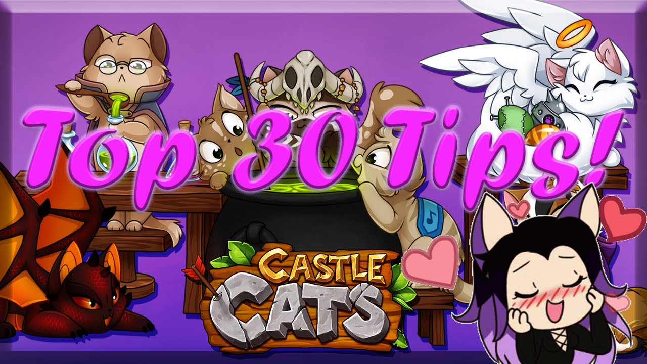 Castle Cats  Top 30 Tips! ~ Become a kitty Master!