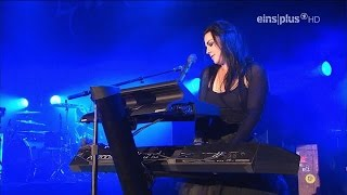 Evanescence - The Other Side (Live)