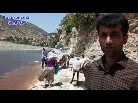 Kulp'un Üçkuyu Köyü kurulduğundan beri susuzdur