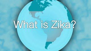 Zika Virus 101