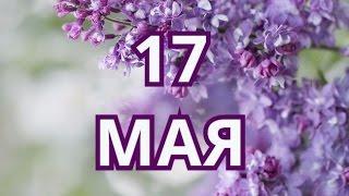 17 мая день борьбы с гомофобией  и другие праздники