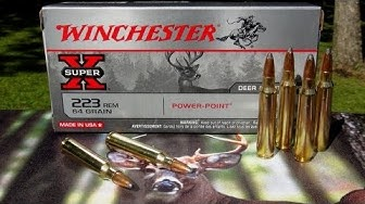 AMMO REVIEW:  .223 Winchester 64 gr Power-Point
