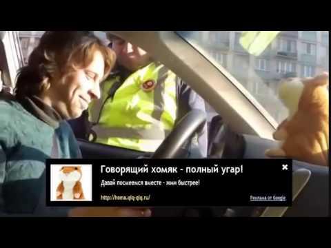 видео смешное на телефон приколы скачать бесплатно