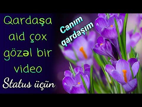 Canım qardaşım - Qardaşa aid super video status üçün (Qardaş üçün ən gözəl hədiyyə)
