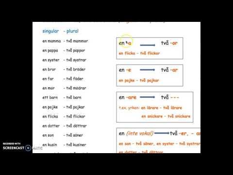 Sfi B1: Substantiv - en, ett och flera