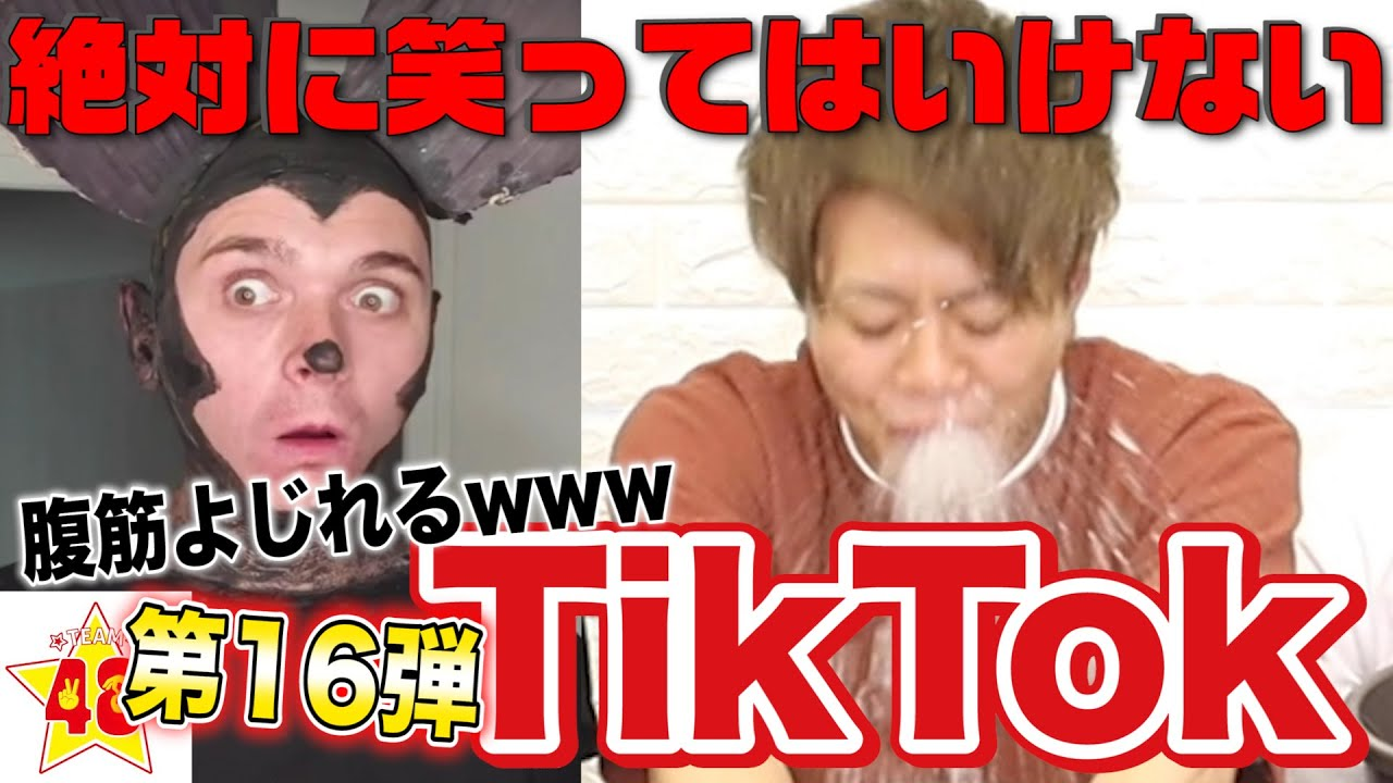 【腹筋崩壊】第16回!絶対に笑ってはいけないTik Tok!!