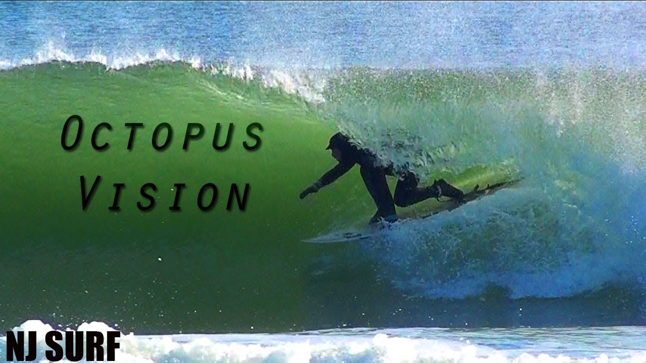 OCTOPUS VISION - NJ SURF 12/10/2017