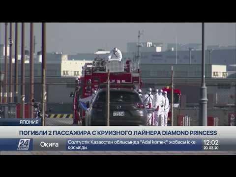От коронавируса скончались два человека с лайнера Diamond Princess
