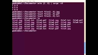 Using xargs in Linux