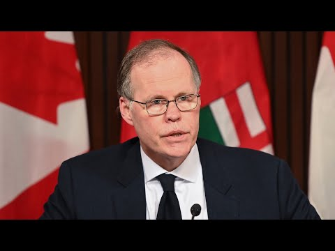 Ontario's current case plateau is 'very precarious,' warns Dr. Brown | COVID-19 modelling update