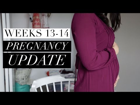 Pregnancy Update Weeks 13-14 | Feeling the baby move?!