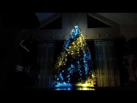 Christmas Tree light show- Karpenko family :-)