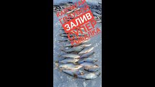 зимняя рыбалка на Капчагае часть 1