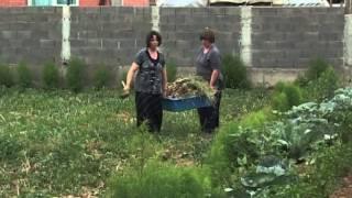 Repeat youtube video Lajme Fahrije Hoti nga fshati Krushë
