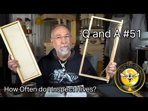 Beginner Beekeeping Questions and Answers 51 Frames with or Without Foundation and much more!