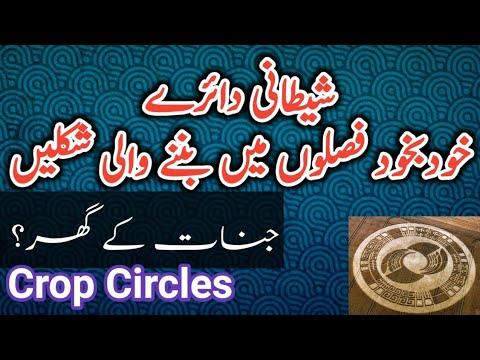 Crop Circles in Urdu - جناتی دائرے
