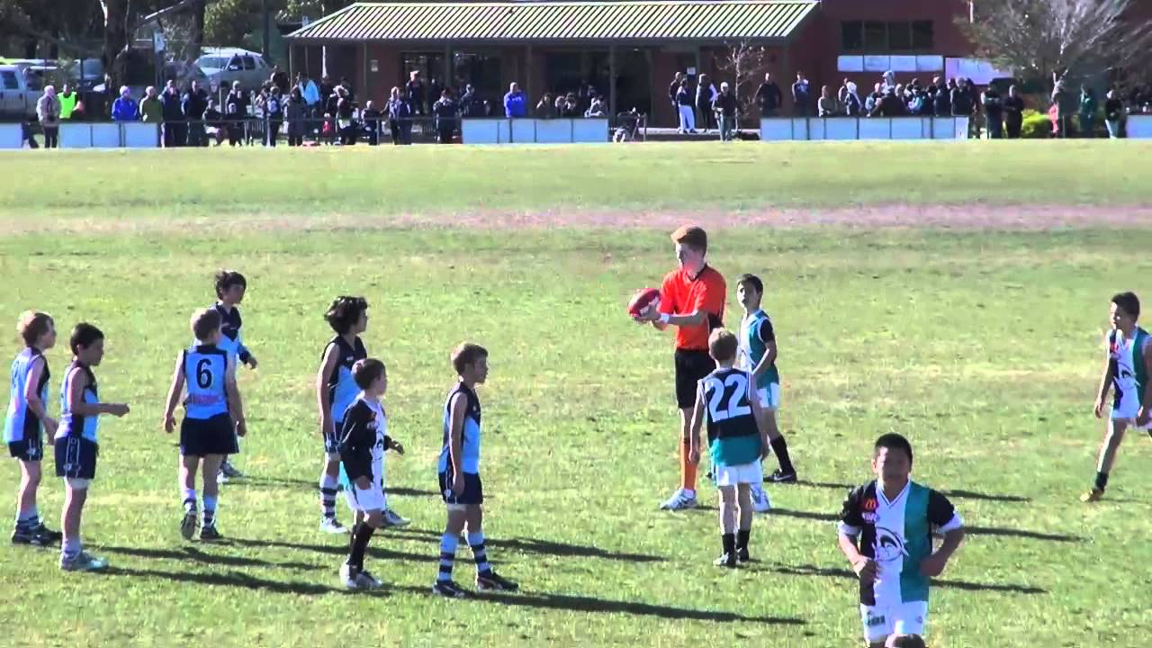Edfl U10 Div 1 Preliminary Final 11 08 13 Hillside Vs