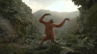 Выпуск #1 l Приколы l Танцующая обезьяна l