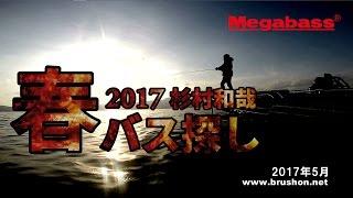 【琵琶湖】2017春バス探し 杉村和哉【メガバス】 thumbnail
