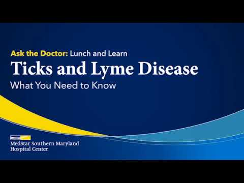 Ticks And Lyme Disease: What You Need To Know