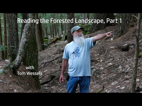 Tom Wessels: Reading the Forested Landscape, Part 1 Mp3