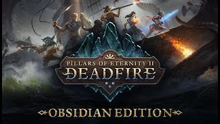 Pillars Of Eternity 2 Deadfire: #23 El otro mundo y Los druidas
