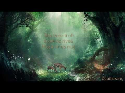 Celtic Woman ft. Oonagh - Tir Na Nog (Lyrics)