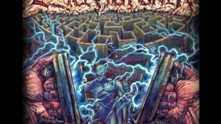 Thrash - Criptofonia - Frecuencia Extrema