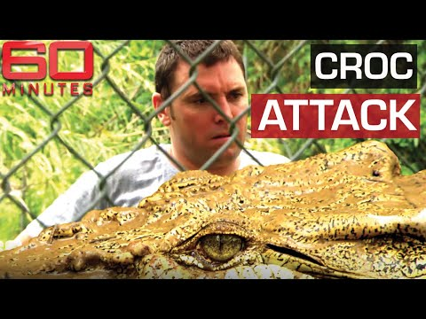 Aussie Man Comes Face To Face With The Crocodile That Attacked Him | 60 Minutes Australia