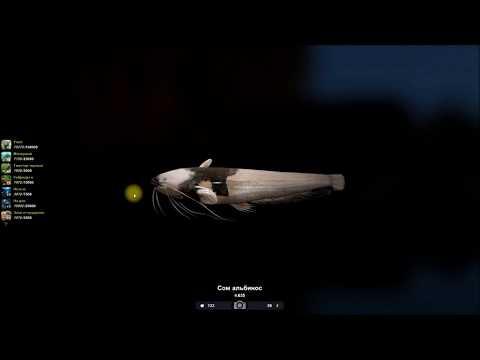 Сом альбинос, ловля на реке Припять, в игре, Трофейная рыбалка 2
