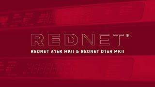 RedNet A16R MKII & RedNet D16R MKII // Workflow Solutions // Focusrite Pro