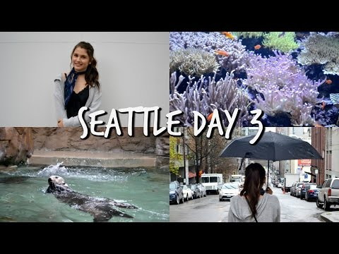 RAINY DAY SEATTLE ADVENTURE!