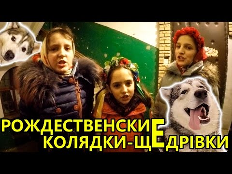 Рождественские песни, хаски и маламут подпевают ;) CHRISTMAS SONGS