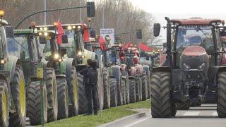 Agricultores y ganaderos ocupan Pamplona en defensa del sector