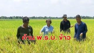 เครือข่ายชาวนาหลายจังหวัดค้าน พรบ.ข้าว สนช.แจงประเด็นที่ถูกวิจารณ์ นายกฯยันต้องการช่วยเกษตรกร