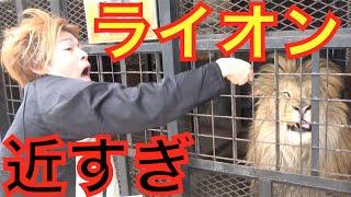 【日本一恐い】恐怖の動物園行ってみた!!!後編 thumbnail