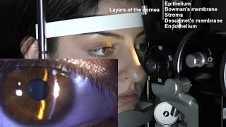 Ophthalmic Skills Series Part 1/5