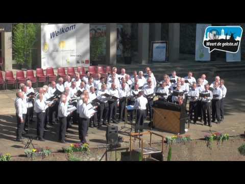 Lichtenberg Experience in Weert
