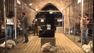 Salim Salim - Full video of the show