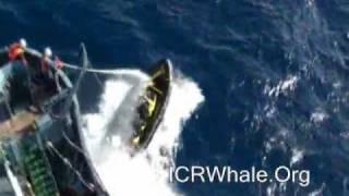 January 11, 2012 Steve Irwin Small Boat