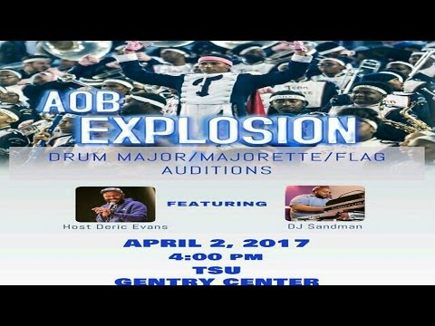 "Tennessee State University's ""AOB Explosion"" (Dancer/DM/Aux Auditions) 2017"