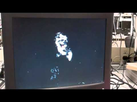 Face detection and tracking on FPGA