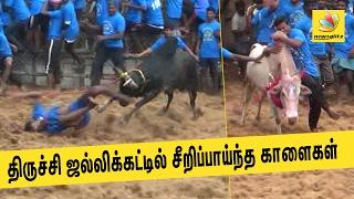 Jallikattu held in Trichy village, nine injured