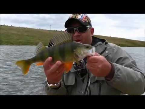 рыбалка на окуня в сентябре на спиннинг