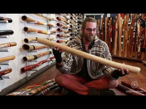 Didgeridoo Buyers Guide - Price - 7 Of 10