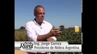 Jorge Correa, el nuevo presidente de Nidera Argentina. Expoagro 2014