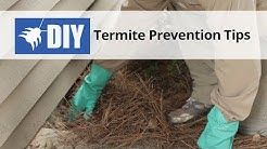 Termite Prevention Tips